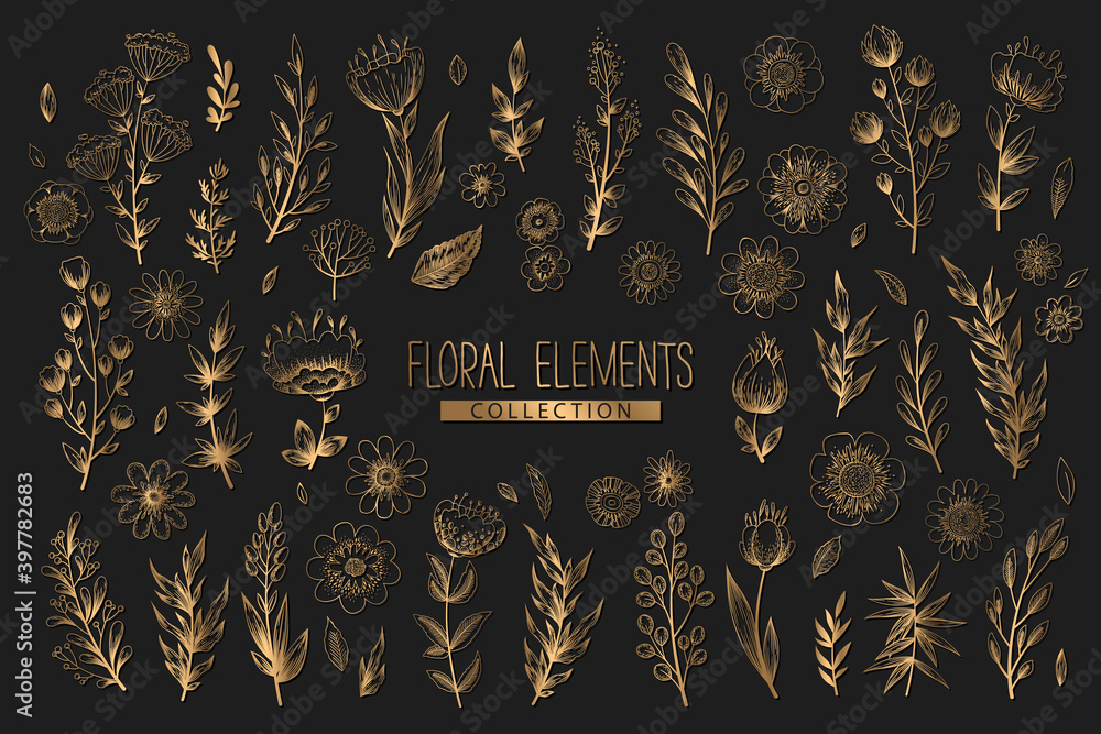 Fototapeta Collection of vector floral elements with gold hand drawn flowers, leaves branches and herbs isolated on black background. Vintage botanical illustration for print, fabric, wallpaper, card