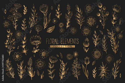 Valokuvatapetti Collection of vector floral elements with gold hand drawn flowers, leaves branches and herbs isolated on black background