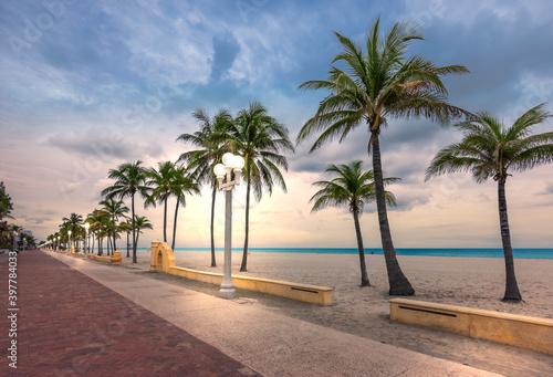 Fotografie, Obraz Hollywood beach, Florida