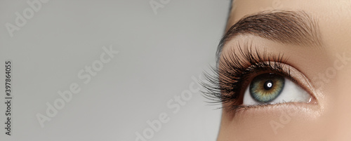 Obraz Beautiful female eye with extreme long eyelashes, black liner makeup. Perfect make-up, long lashes. Closeup fashion eyes - fototapety do salonu