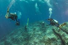 Scuba Divers Underwater In Ocean Over Deep Reef In Niihau, Hawaii