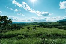 壮大な山脈と草原