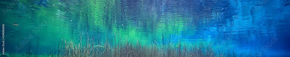 Fototapeta view underwater lake, freshwater landscape ecosystem clear water