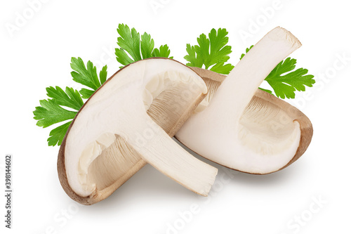 Fototapeta Fresh Shiitake mushroom isolated on white background with clipping path and full depth of field. obraz