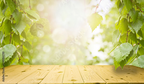Fotografiet Spring and summer background - fresh green birch leaves, frame in the rays of sunlight, with a wooden table
