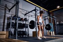 Sportswoman Building Muscle Mass With A Weight-training Exercise