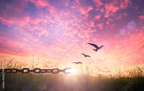 Obraz World freedom day concept: Silhouette of bird flying and broken chains at autumn meadow sunrise background - fototapety do salonu