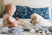 Young Girl And Puppy With Christmas Decorations