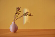 Little Pretty Sprigs Flowers In A Pink Small Vase On A Shelf And A Light Background