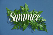Minimal Tropical Palm Leaf Plants Summer Concept Template For Your Design With Summer Text On Blue Background. Top View