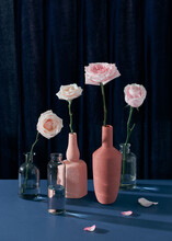 Still Life With Pink Roses In Vases And Draped Curtain