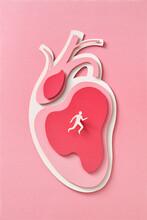 Handmade Paper Runner On A Papercraft Model Of Human Heart.