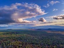 Bird's-eye View From Drone Above Wonderful Forest Scene, Kamchatka Krai.