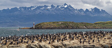 The Island Of The Birds In The Beagle Channel In Front Of The City Of Ushuaia