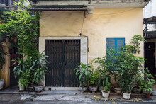 Old Apartment Building In Hanoi With A Shuttered Security Gate And Leafy Plants