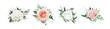 Vector, watercolor style floral bouquet. Blush peach, dusty pink, ivory white Rose flowers, Eucalyptus greenery, berries, tender green leaves, vines. Editable wedding designer element set illustration
