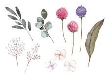 ナチュラルな花と葉っぱの素材 水彩イラスト
