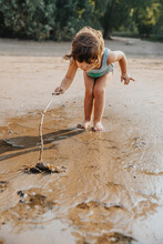 Cute Little Girl Discovering For Crab At Beach