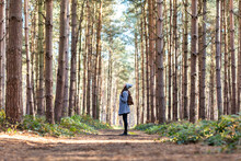 Woman Exploring In Cannock Chase Forest During Winter Season
