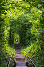 Love Tunnel, Railway Section In Forest Near Klevan, Ukraine. So Named Because, Some People Say, Before By This Way Girls From A Nearby Village And Soldiers From A Former Military Unit Went On A Dates.