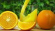 Freshly squeezed orange juice is poured in a glass next to the ripe oranges on the background of greenery in slow motion