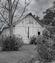 An Aging And Decaying Barn In A Rural Area Done In Black And White.