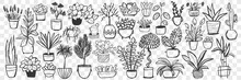 Plants In Pots Doodle Set. Collection Of Hand Drawn Homegrown Plants And Flowers In Pots For Decoration Isolated On Transparent Background. Illustration Of Natural Botany Floral Indoor Lifestyle