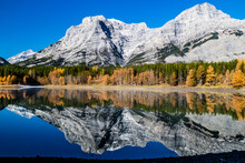 Rockies Reflected In Wedge Pond An A Crips Autumn Day. Spray Valley Provincial Park.