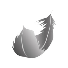 Gray Feather Curly Decoration Ornament Icon
