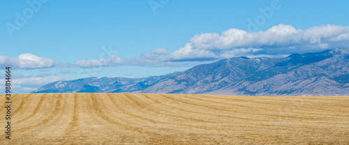 Canvas Print panorama of golden hay field in Montana with the majestic Rocky Mountains in the