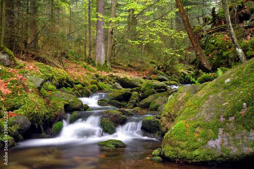 Tela Waterfall on Black creek in the National park Sumava,Czechia