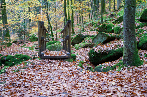 Fototapeta Small wooden Bridge in the black forest, big trees and mossy stones. slippery autumn leaves. Front view. Germany, Blackforest. obraz na płótnie