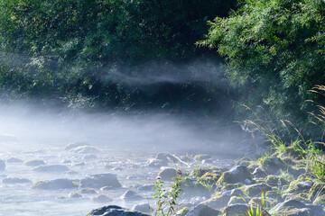 Wildbach Raccolana in Italien am Morgen mit Nebel