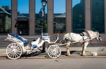 Caleche Drawn By Horse Waiting For A Fare In Old Montreal, Quebec, Canada