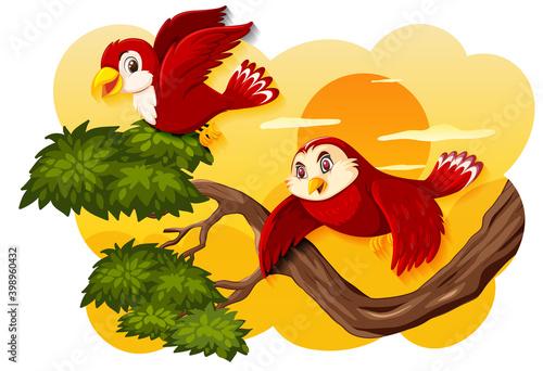 Bird in nature sunset scene Wallpaper Mural