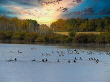 A Horizontal Photo Of A Beautiful Scene Of A Sunset With Ducks On The Water.
