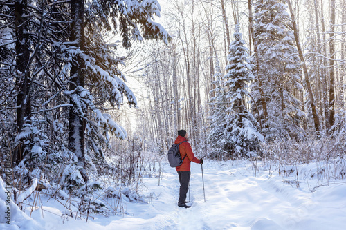 Foto Man with nordic walking poles hiking in snow-covered winter nature