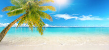 Beautiful Natural Tropical Landscape, Beach With White Sand And Palm Tree Leaned Over Calm Wave. Turquoise Ocean On Background Blue Sky With Clouds On Sunny Summer Day, Island Maldives.