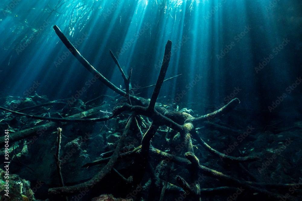 Fototapeta Cenote Ponderosa with light rays Underwater in Yucatan, Mexico