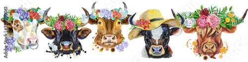 Canvas Print Border from watercolor portraits of bulls for decoration