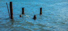 Old Piles In Sea Water.