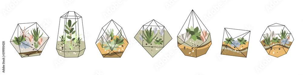 Fototapeta Florarium, glass vase. Succulent plants and cactuses in geometric glass pot. Garden in bottle, diy geometric terrarium, mini ecosystem. Vector flat cartoon illustration