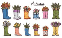Set Of Gumboots Or Wellies With Leaves And Flowers Vector Illustration Isolated