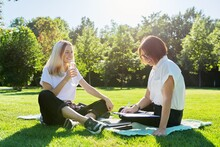 Female Teacher Psychologist Social Worker Talking To Teenage Student On The Lawn