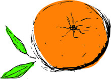 Bright Sketch Of Ripe Mandarin (orange, Clementine, Mandarins) Fruit With Leaves.  Hand Drawn Mandarin Isolated On White Background. Good For Fabric, Textile, Printing, Menu, Cartoons, Cards, Posters.