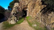 Widok Skała Tunel Trawa Drzewo