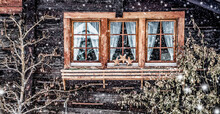 Traditional Swiss Wooden Hut And Snowfall