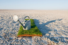 Watering Can On Grass Turf Patch On Salt Flat.