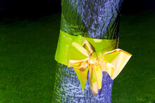 Yellow Ribbon Tied Round Tree, Dusseldorf, Germany