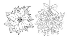 Poinsettia Flower And Mistletoe Hanging. Christmas Decoration. Vintage Vector Artwork. Black And White. Coloring Book Page. Hand Drawn. Holiday Concept For Invitation Greeting Card, Print, Poster